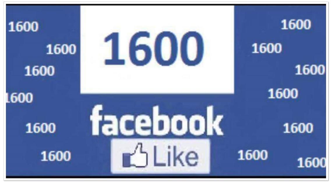 1600 Facebook-Fans
