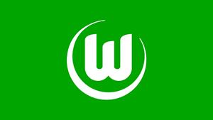 Sponsor - VfL Wolfsburg