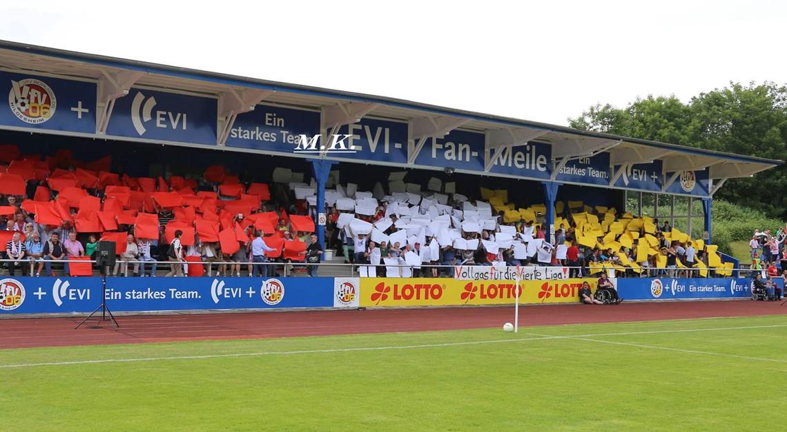 Friedrich-Ebert-Stadion (F-E-S)