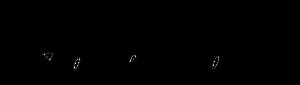 Sponsor - Hollenhorst