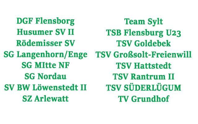 Neue Staffeleinteilung des SHFV