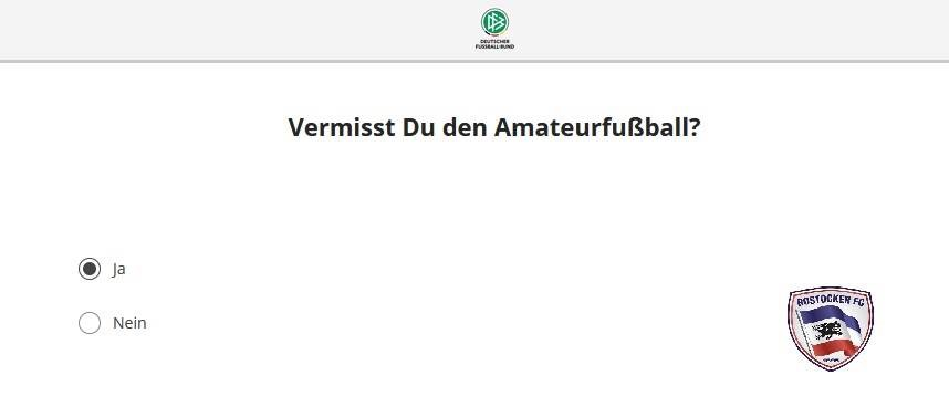 Umfrage im Amateurfußball