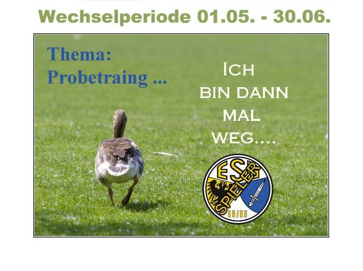 Thema: Probetraining ...