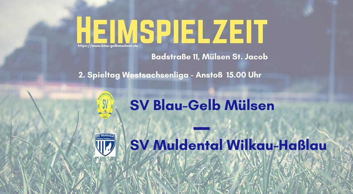 Erstes Heimspiel gegen SV Muldental Wilkau-Haßlau