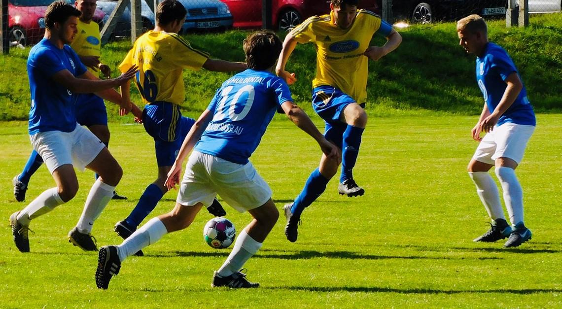 Blau-Gelb mit 2:2 Unentschieden gegen Wilkau